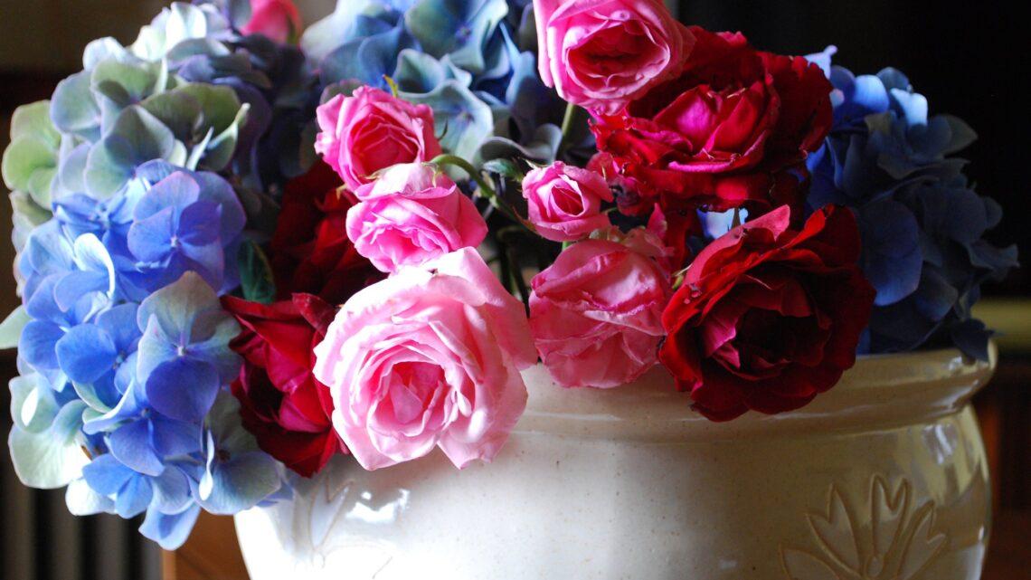 Il fiore della Poesia